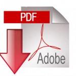 ivm-pdf